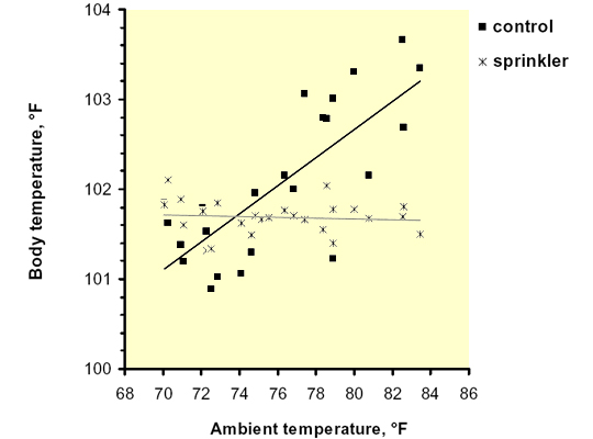 relationship between body temperature and spermatogenesis