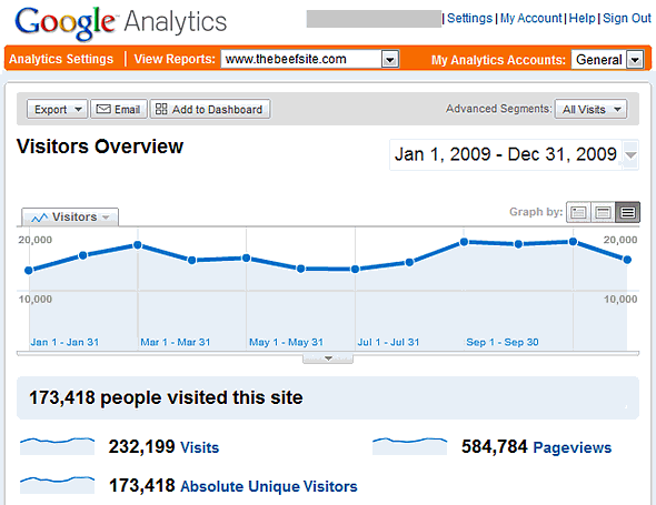 Google Analytics Summary for TheBeefSite for 2009