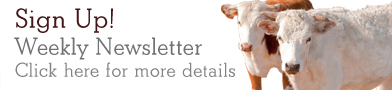 Sign up for TheCattleSite weekly newsletter